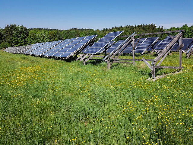 solar field from Choose Solar