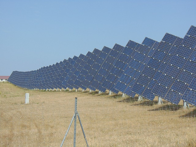 solar panels at solar farm